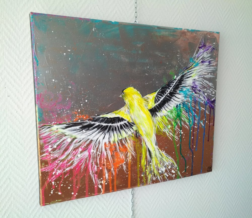 l'oiseau multicolore, 61/50cm