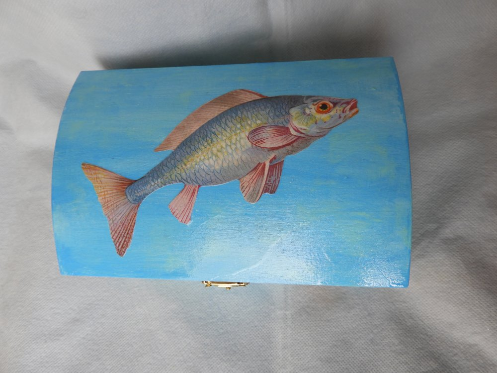 grand coffret corsaire poisson