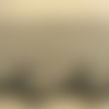 Broderie sur tulle noire  6 cm broderie  2,5 cm/hauteur de broderie:2.5 cm