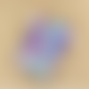 Lot de 5 sachets en organza  multicolore