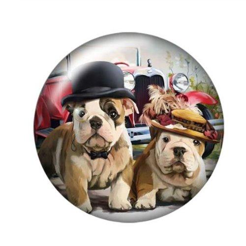 1 cabochon en verre - 25 mm - les chiens aux chapeaux