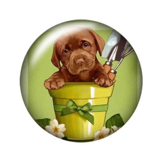 1 cabochon en verre - 25 mm - le chien dans le pot