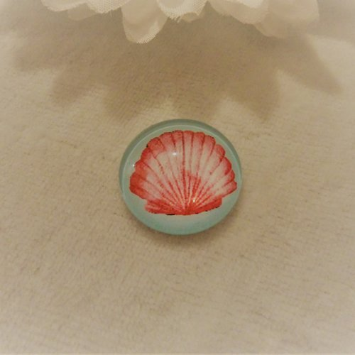 Cabochon en verre rond de 20 mm / 2 cm thème de la nature, plage, coquillage de mer rose fond bleu