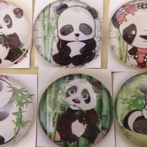 6 cabochons verre 30mm panda