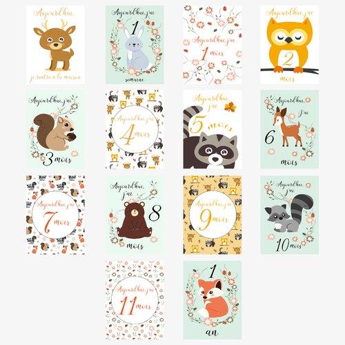 Carte étape bébé garçon première année mois par mois, carte étape bébé