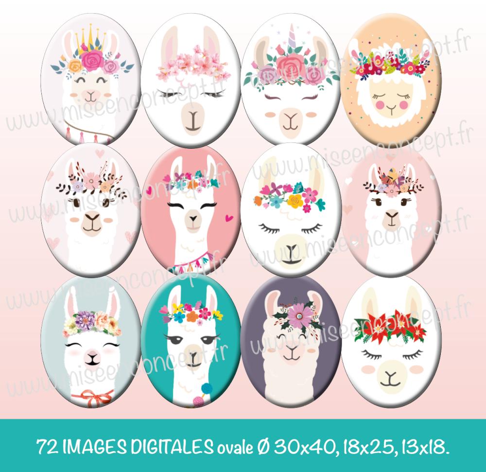 72 images digitales - tête de lama - ovale - images cabochons - bijoux