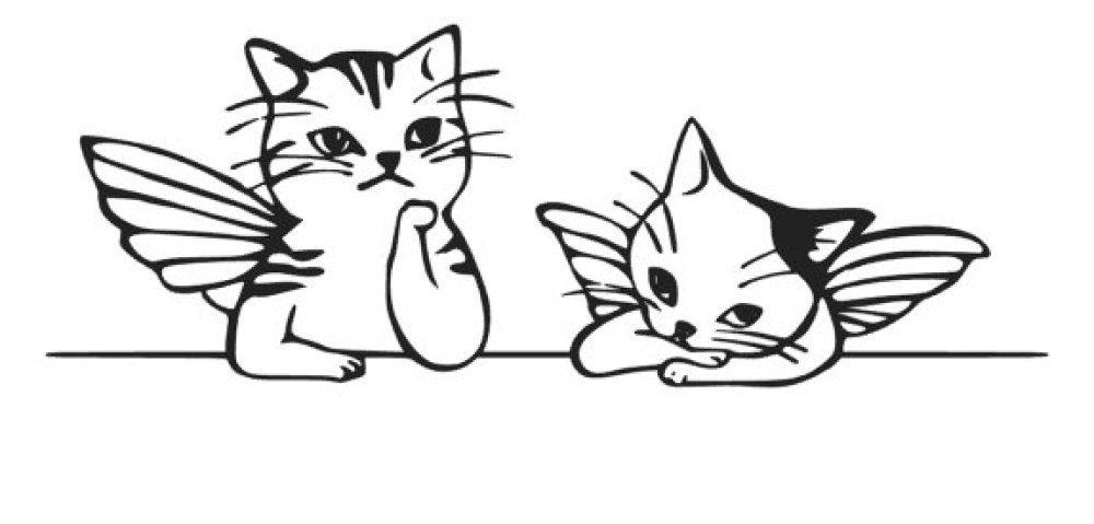2 petits Chats en flex
