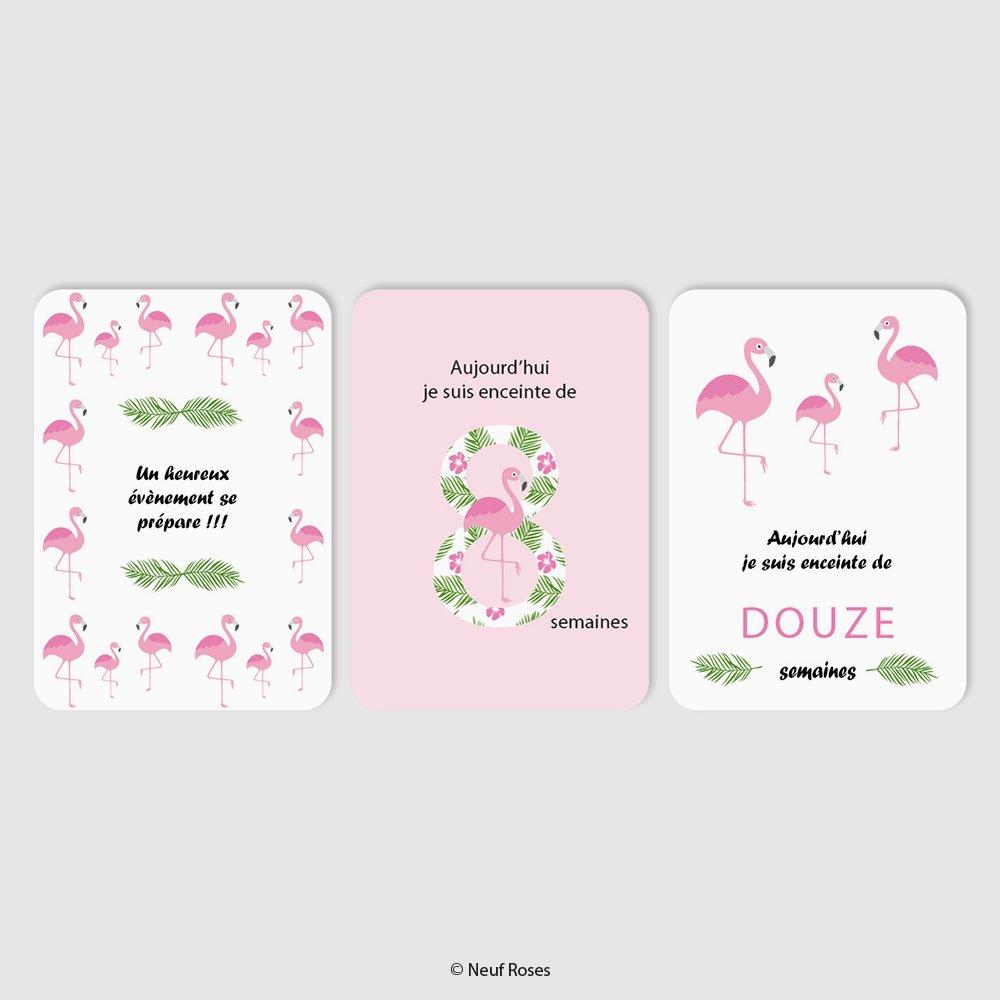 Cartes étapes grossesse - flamant rose