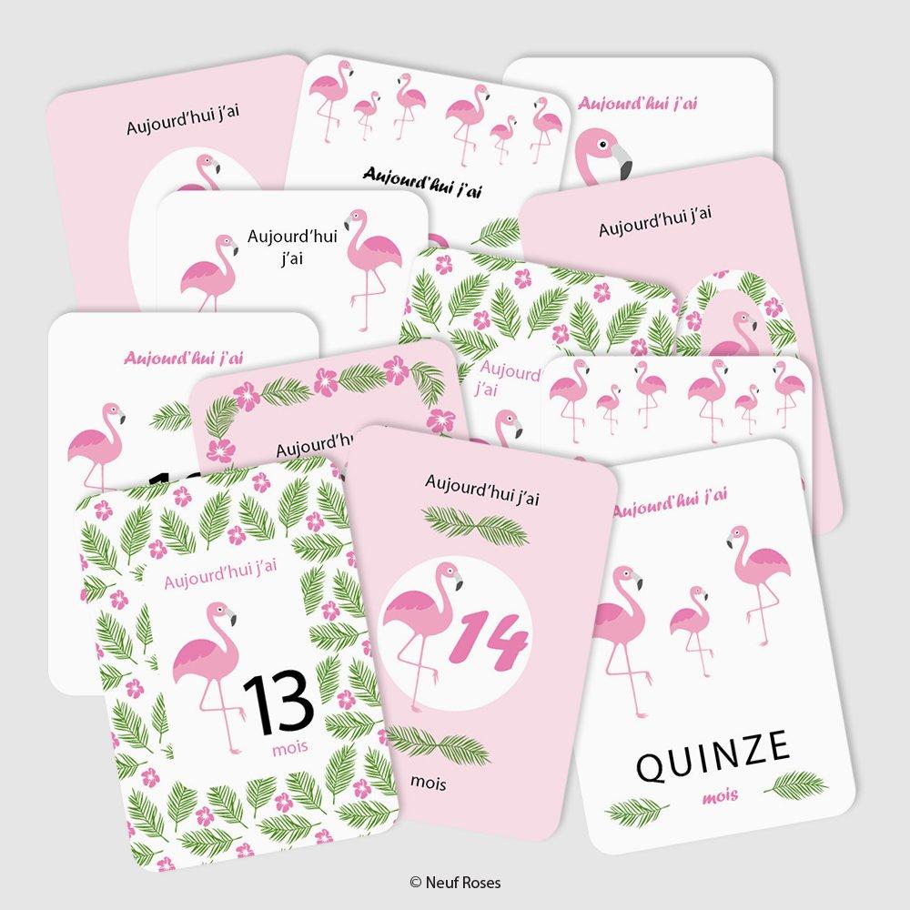 Cartes étapes bébé deuxième année - flamant rose