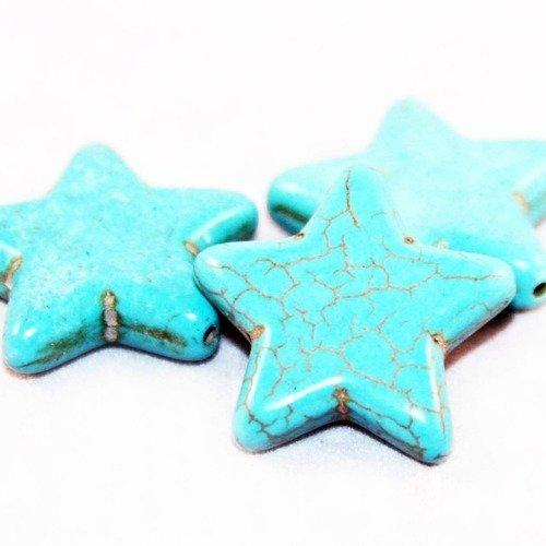Phw41p - une perle connecteur howlite turquoise étoile motifs à fissures