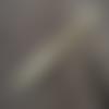 Stylo bille en bois de pamplemoussier