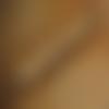 Stylo bille encre noir, mécanisme anthracite, bois de prunier