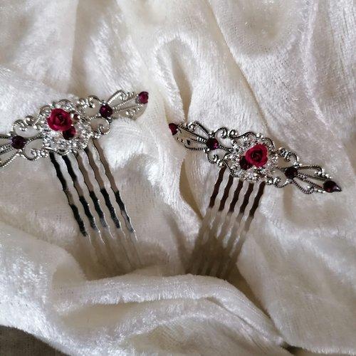Duo de peignes décoratifs prune argenté