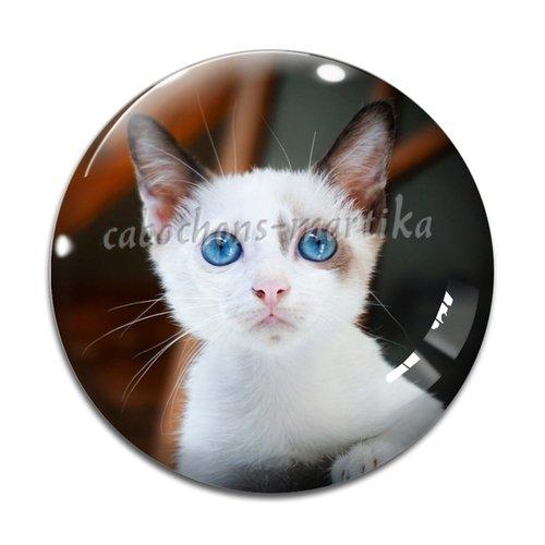 Cabochon chat, cabochon résine 25 mm chat