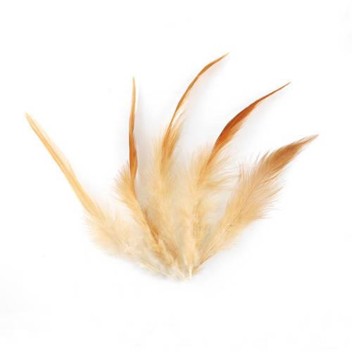 lot de 20  plumes faisane marron