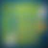 Kit découverte lingettes lavables pour bébé motif etoiles fond vert (zéro déchets)