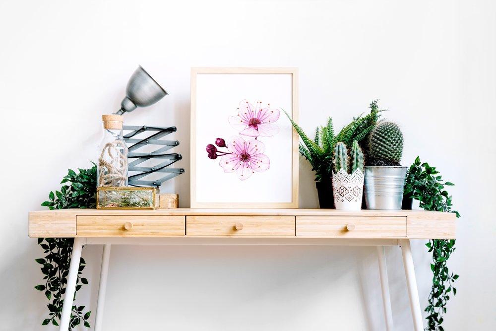 Aquarelle fleurs,affiche botanique,poster fleurs,Fleurs de cerisier,Sakura,aquarelle botanique,reproduction d'art de mon aquarelle originale