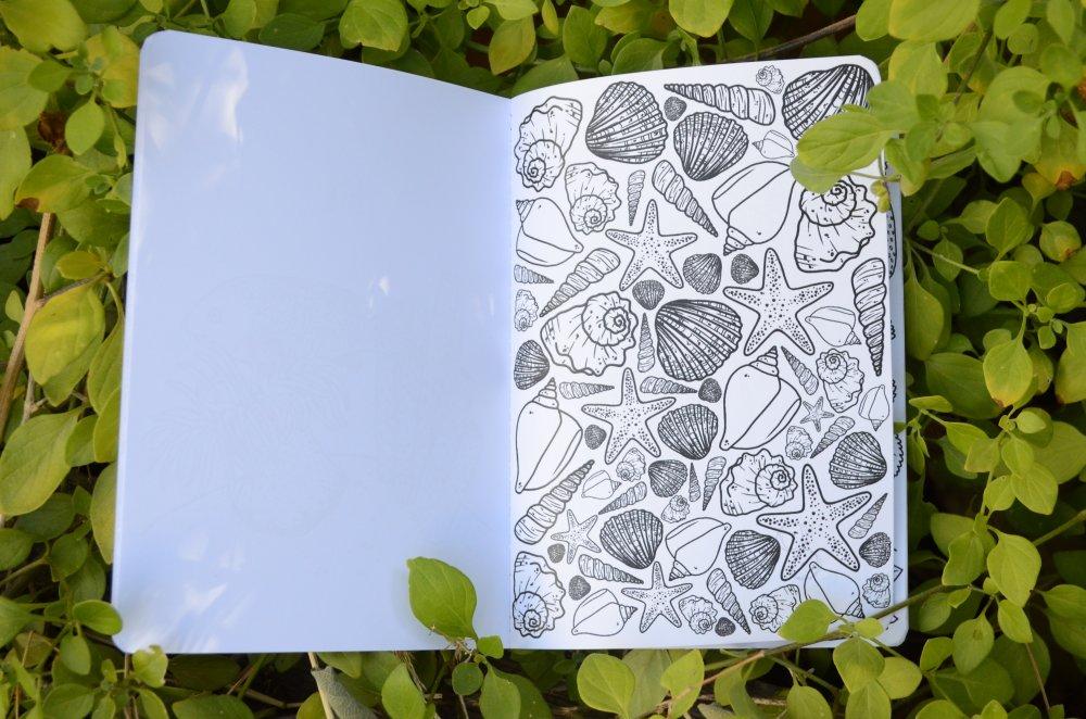 SAISONS , cahier de coloriage
