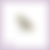 Découpe scrapbooking maximus cheval raiponce princesse en couleurs (ref.1060)