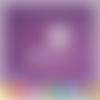 Découpes scrapbooking marraine cendrillon citrouille princesse (ref.1041)
