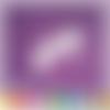 Découpe scrapbooking fée, rêve, fraise, princesse, magie, fille embellissement die cut 32 couleurs disponibles (ref.2433)