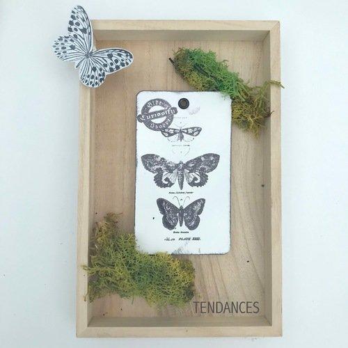 Etiquette xl metal papillons