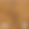 Tissu double gaze à pois dorés - camel