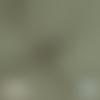 Tissu double gaze à pois dorés - kaki