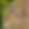 Boucles d'oreilles ananas pompoms jaune