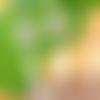 Jolies boucles avec pendentif nacre symbole celtique triskel