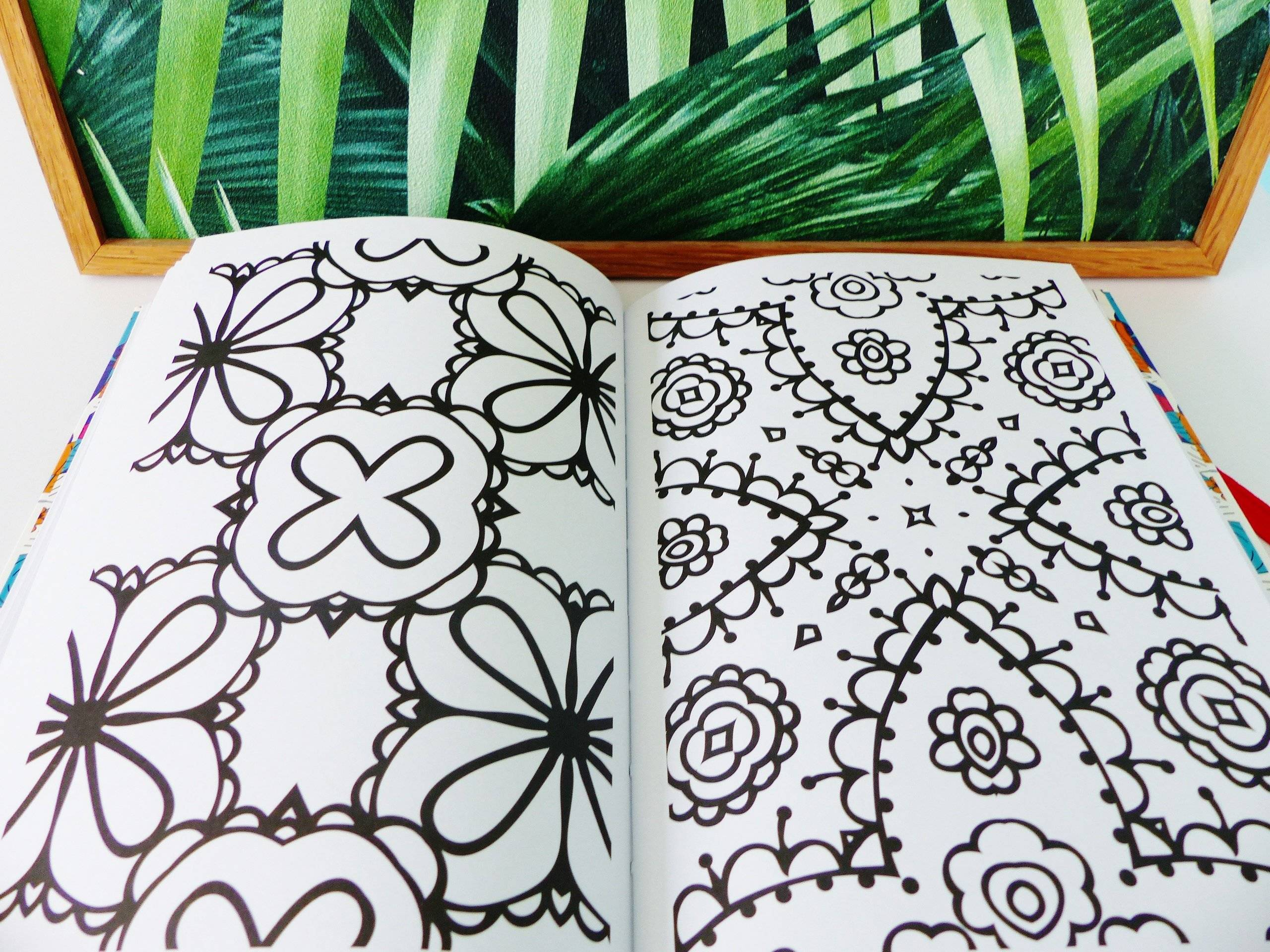 livre de coloriage pour adultes fleurs motifs géométriques nombreux détails the gorgeous colouring book for grown-ups