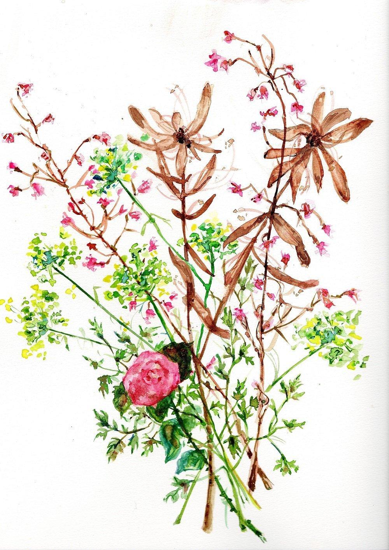 Aquarelle Peinture Tableau Fleur Rose Et Fleurs Des Champs Botanique Pour Sous Verre Un Grand Marche