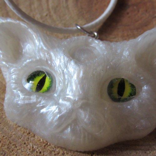 collier ras de cou chat