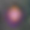 Boucles d'oreille plume de paon orange & violet