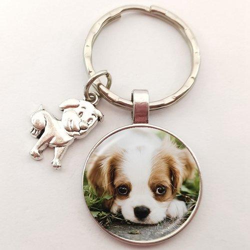 Porte clef metal argente : chien epagneul japonais 27mm (01)