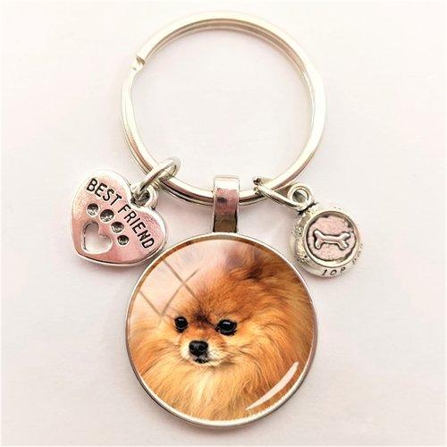 Porte clef metal argente : chien loulou 27mm (01)