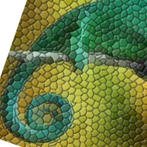 Pompon le caméléon