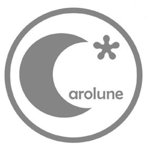 Suncatcher, attrape soleil, cristal feng shui by carolune