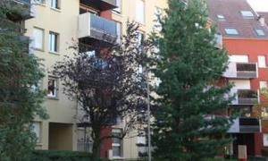 Appartement 4pièces 79m² Belfort