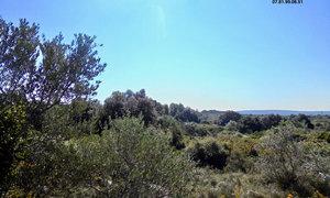 Terrain 4455m² Pignan