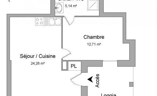 Location Appartement Villeurbanne Léon Blum Bon Coin