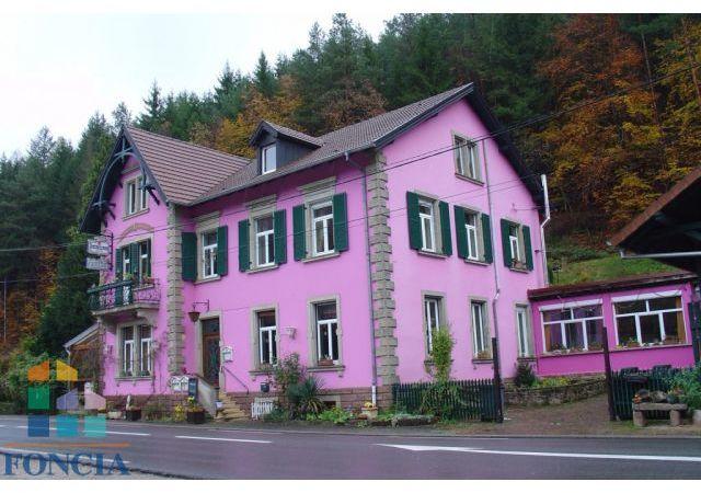 Maison 16pièces 395m² à Saverne