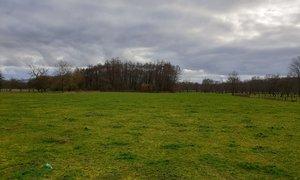 Terrain 1200m² Petitmagny