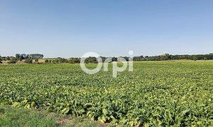 Terrain 1200m² Conchy-les-Pots
