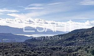 Terrain 1806m² Coggia