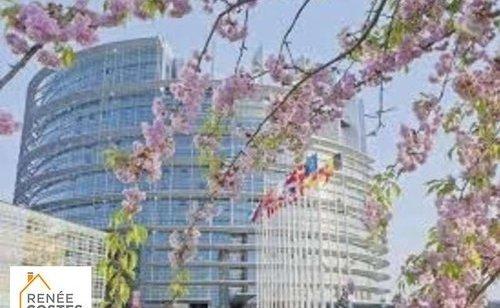 Cherry Blossom en ligne datant rencontres pièces égyptiennes