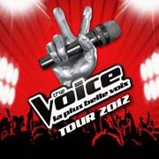 The voice tour 2012