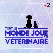TOUT LE MONDE JOUE AU VÉTÉRINAIRE