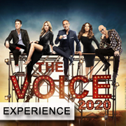 THE VOICE EXPERIENCE